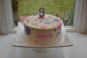 cakes 017