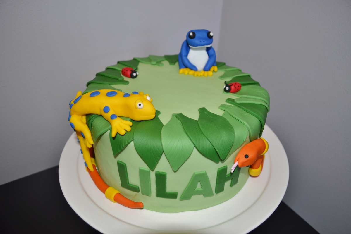 Rainforest Cake